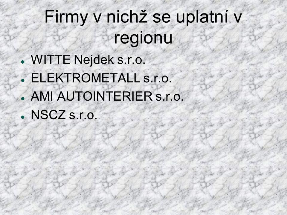 Firmy v nichž se uplatní v regionu  WITTE Nejdek s.r.o.  ELEKTROMETALL s.r.o.  AMI AUTOINTERIER s.r.o.  NSCZ s.r.o.