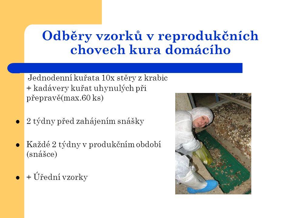 Odběry vzorků v reprodukčních chovech kura domácího Jednodenní kuřata 10x stěry z krabic + kadávery kuřat uhynulých při přepravě(max.60 ks)  2 týdny