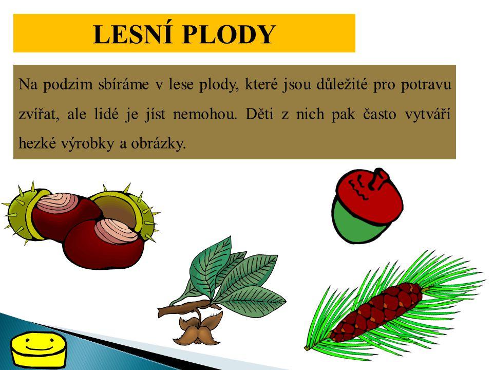 LESNÍ PLODY Na podzim sbíráme v lese plody, které jsou důležité pro potravu zvířat, ale lidé je jíst nemohou. Děti z nich pak často vytváří hezké výro