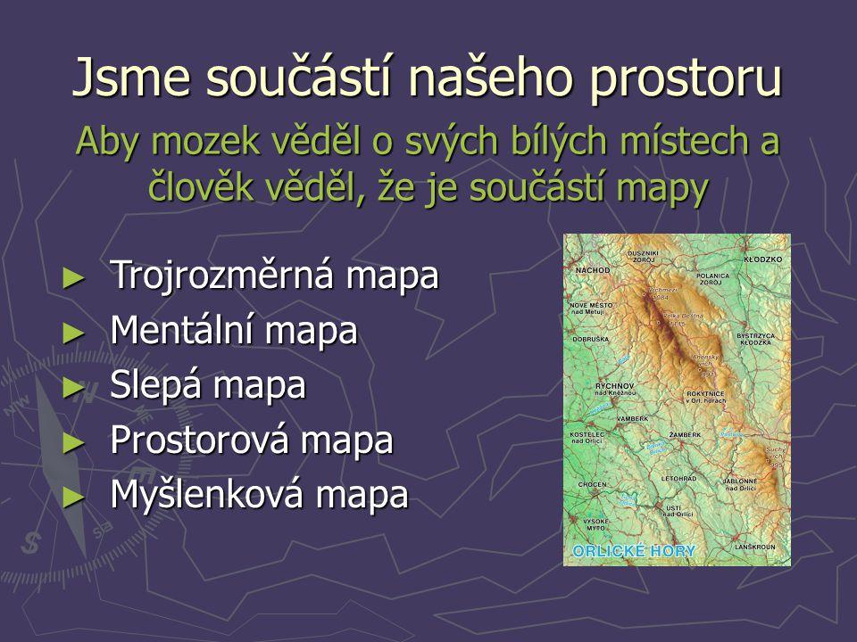 Jsme součástí našeho prostoru Aby mozek věděl o svých bílých místech a člověk věděl, že je součástí mapy ► Trojrozměrná mapa ► Mentální mapa ► Slepá m