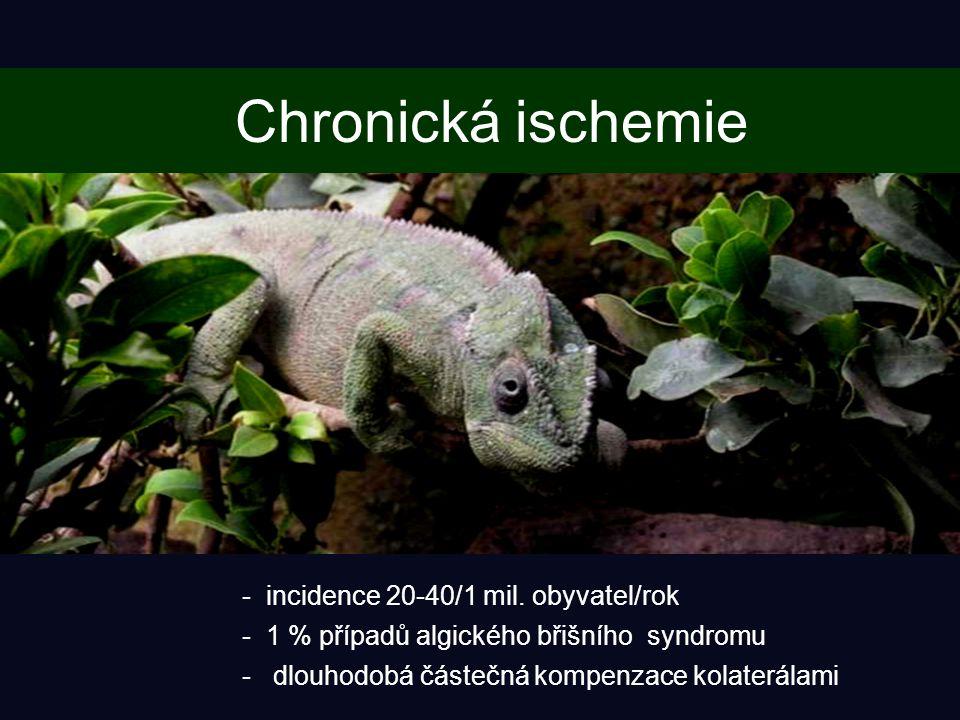 Chronická ischemie - incidence 20-40/1 mil.