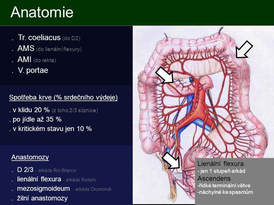 Anatomie.Tr. coeliacus (do D2). AMS (do lienální flexury).