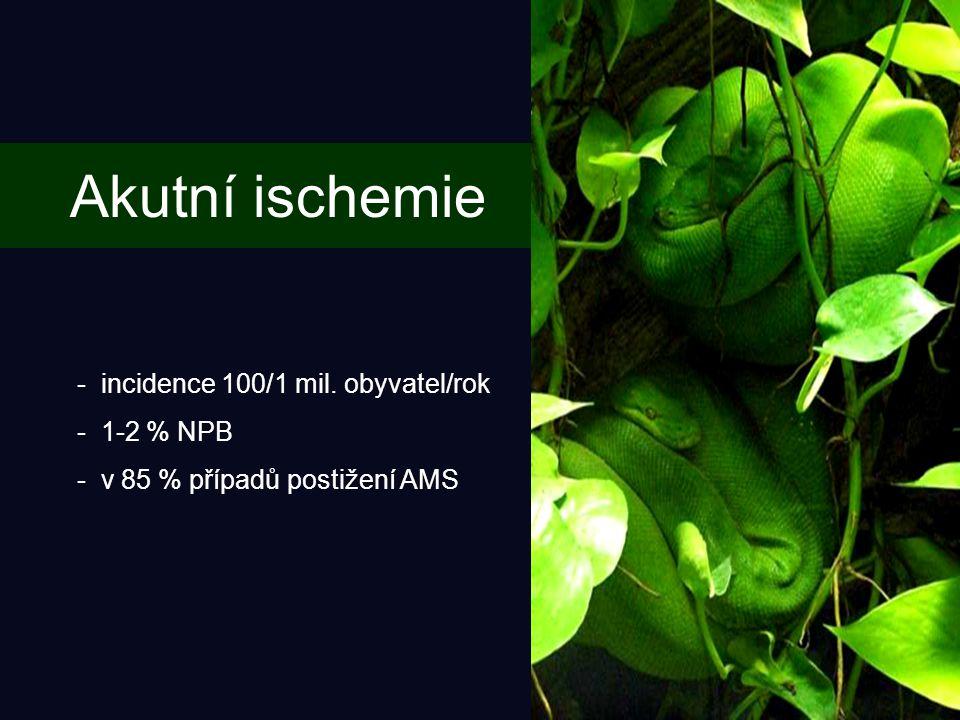 Akutní ischemie - incidence 100/1 mil. obyvatel/rok - 1-2 % NPB - v 85 % případů postižení AMS