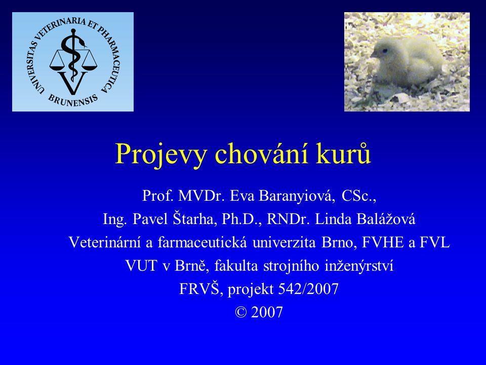 © Baranyiová et al. Projevy chování kurů - FRVŠ 2007 42 Odpočinek - rostoucí brojleři (video)