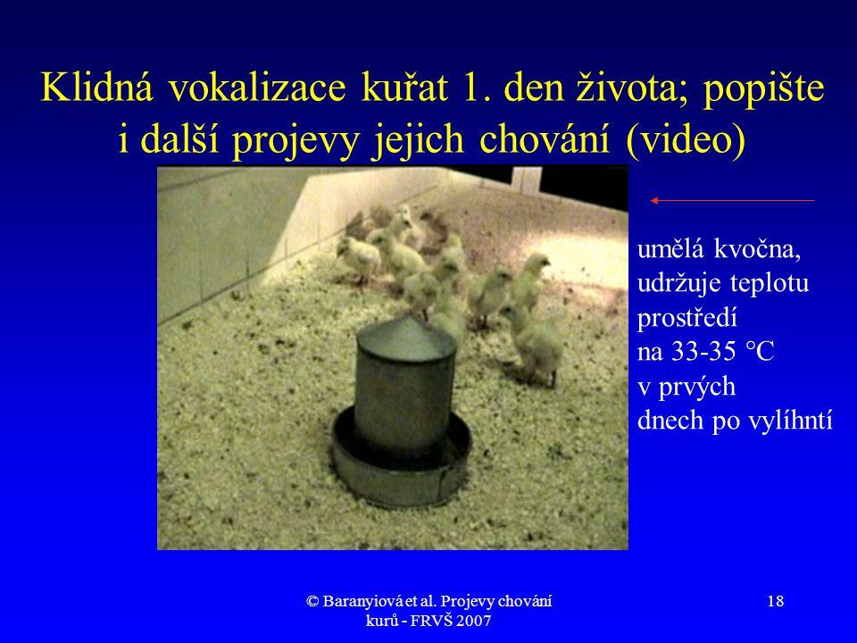© Baranyiová et al. Projevy chování kurů - FRVŠ 2007 18 Klidná vokalizace kuřat 1. den života; popište i další projevy jejich chování (video) umělá kv