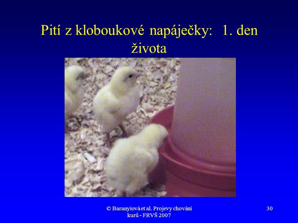 © Baranyiová et al. Projevy chování kurů - FRVŠ 2007 30 Pití z kloboukové napáječky: 1. den života