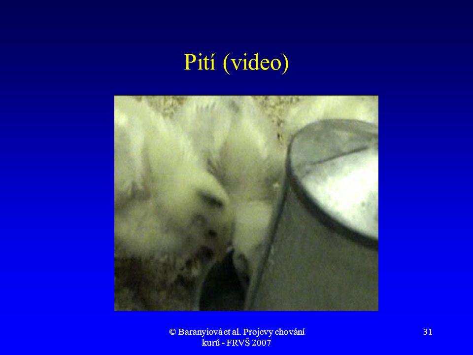 © Baranyiová et al. Projevy chování kurů - FRVŠ 2007 31 Pití (video)