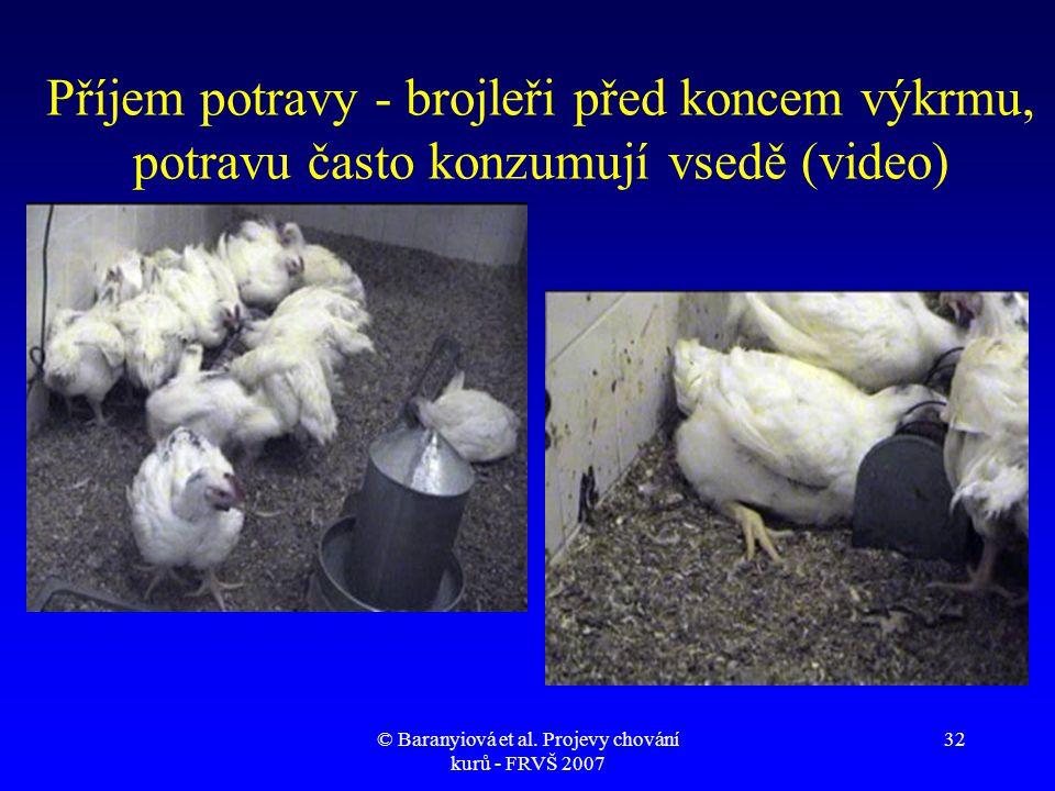 © Baranyiová et al. Projevy chování kurů - FRVŠ 2007 32 Příjem potravy - brojleři před koncem výkrmu, potravu často konzumují vsedě (video)