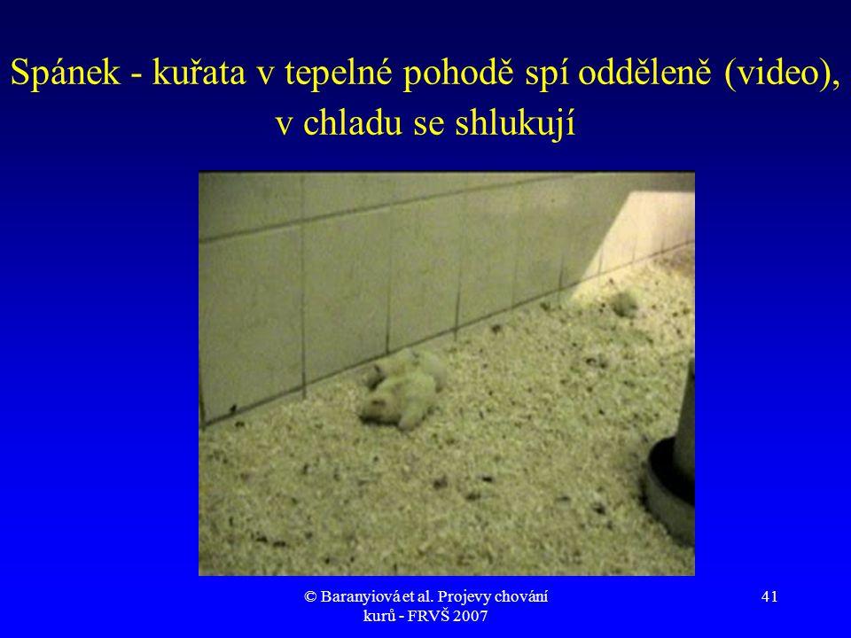 © Baranyiová et al. Projevy chování kurů - FRVŠ 2007 41 Spánek - kuřata v tepelné pohodě spí odděleně (video), v chladu se shlukují