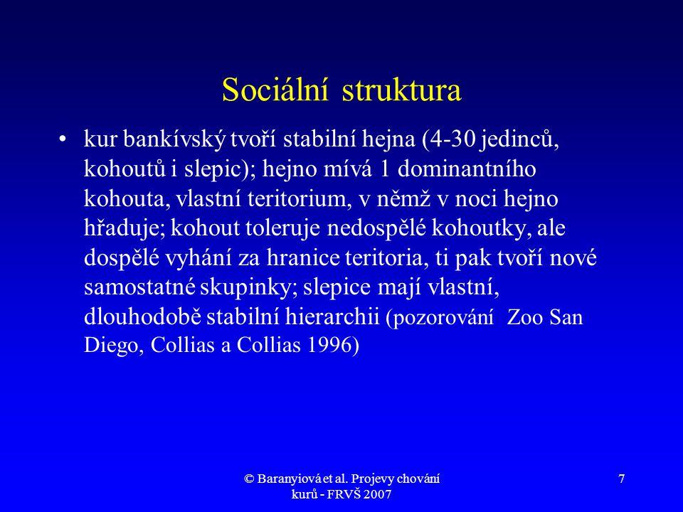 © Baranyiová et al.Projevy chování kurů - FRVŠ 2007 18 Klidná vokalizace kuřat 1.