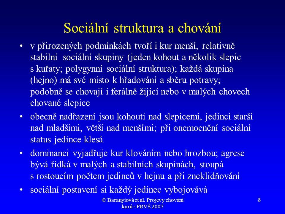 © Baranyiová et al.Projevy chování kurů - FRVŠ 2007 39 Protahování končetin, spánek, 1.