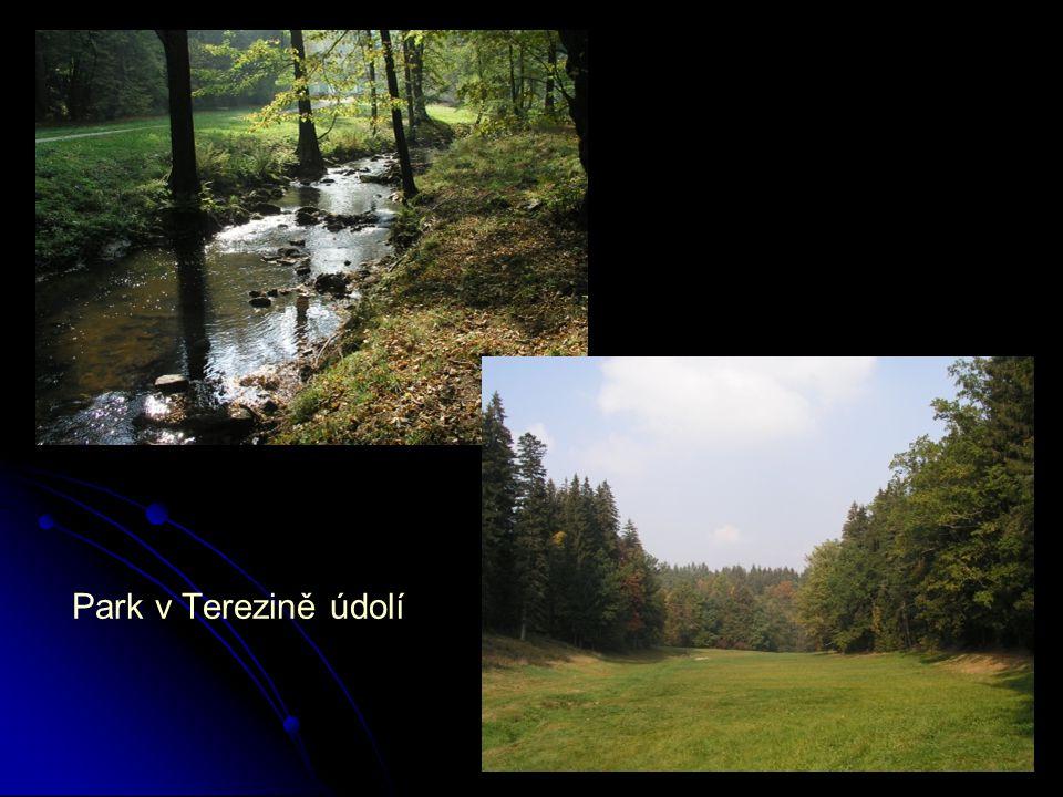 Park v Terezině údolí