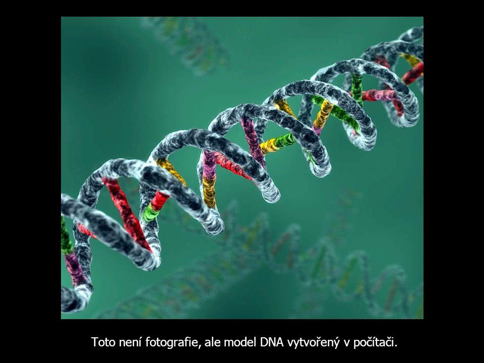 Toto není fotografie, ale model DNA vytvořený v počítači.