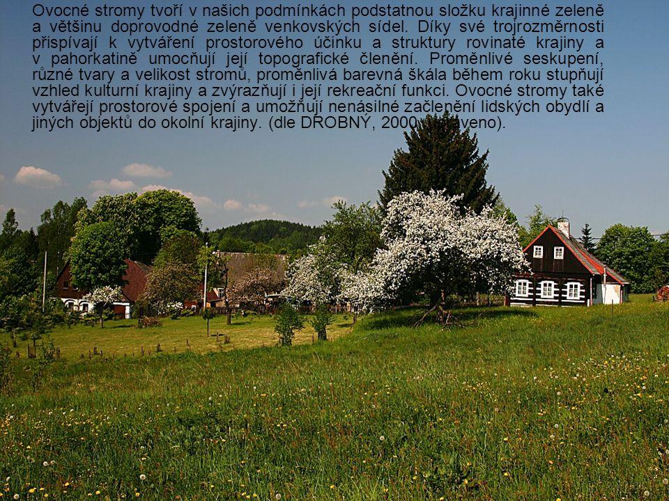 Formy a způsoby výsadeb ovocných dřevin Kromě plošných výsadeb ve formě ovocných sadů se ovocné stromy v české a moravské krajině uplatňují zejména v cestních stromořadích.