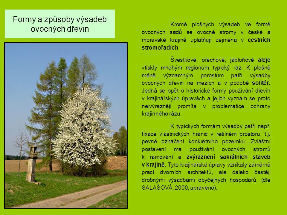 Formy a způsoby výsadeb ovocných dřevin Kromě plošných výsadeb ve formě ovocných sadů se ovocné stromy v české a moravské krajině uplatňují zejména v