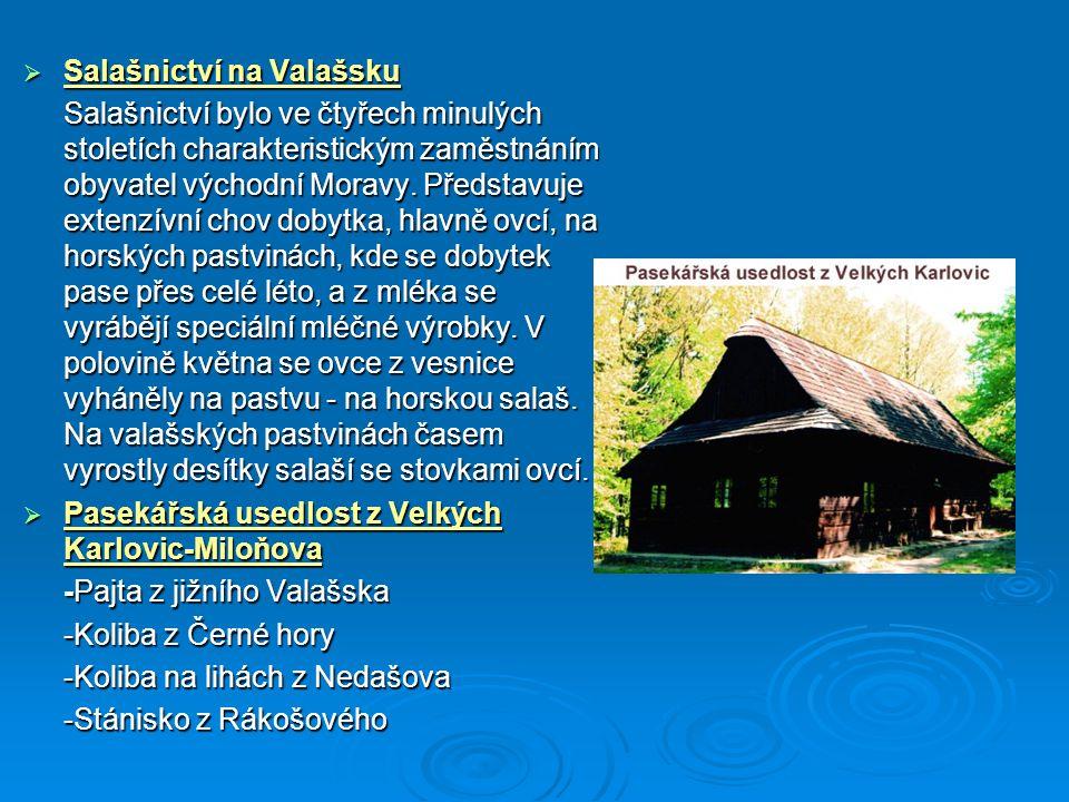  Salašnictví na Valašsku Salašnictví bylo ve čtyřech minulých stoletích charakteristickým zaměstnáním obyvatel východní Moravy. Představuje extenzívn