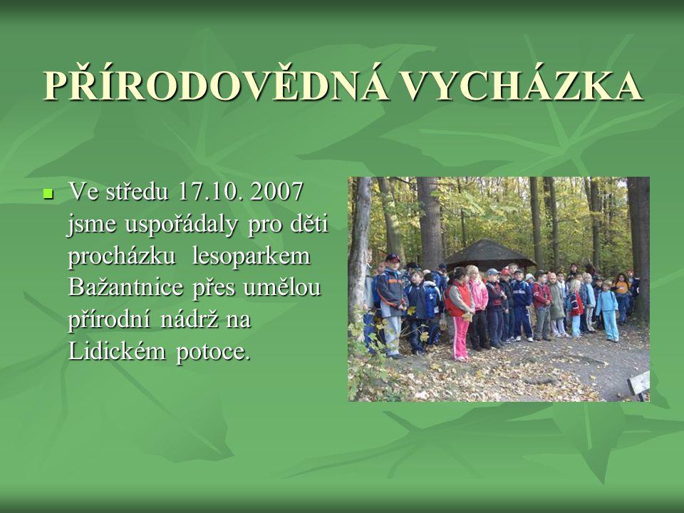 PŘÍPRAVA PROJEKTU  V hodinách prvouky a českého jazyka jsme děti seznámily s ohroženými a chráněnými druhy rostlin a živočichů. Vysvětlili jsme si př