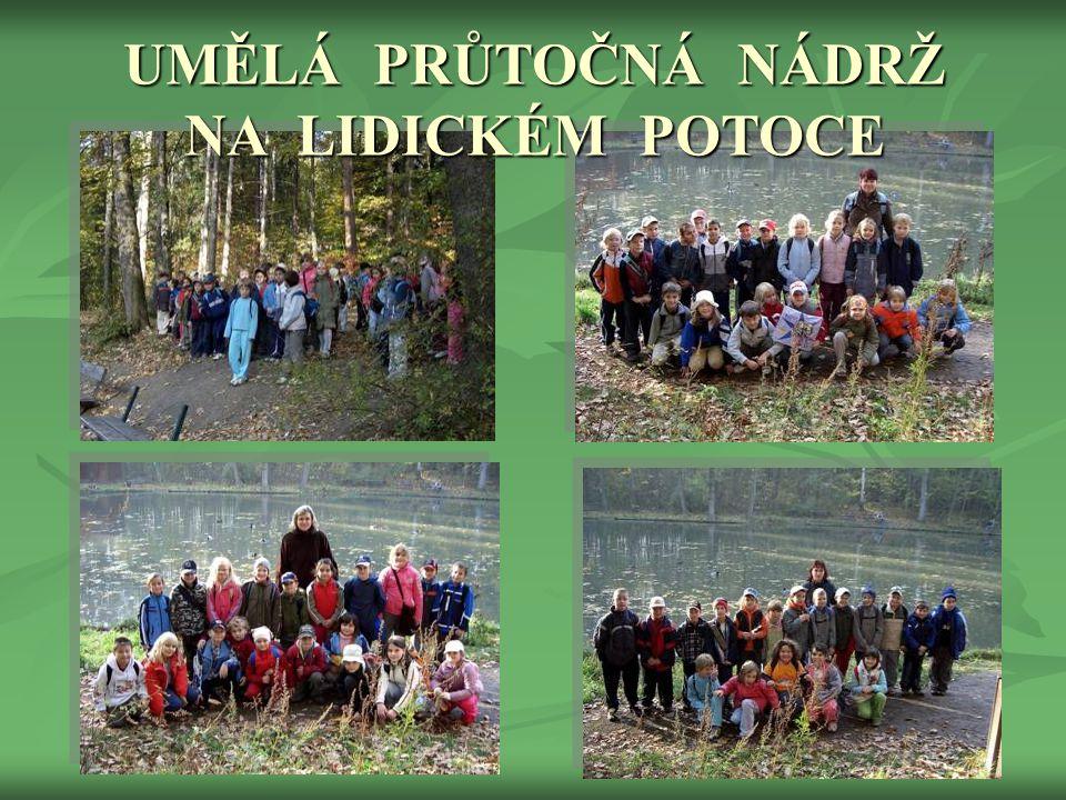 PŘÍRODOVĚDNÁ VYCHÁZKA  Ve středu 17.10. 2007 jsme uspořádaly pro děti procházku lesoparkem Bažantnice přes umělou přírodní nádrž na Lidickém potoce.