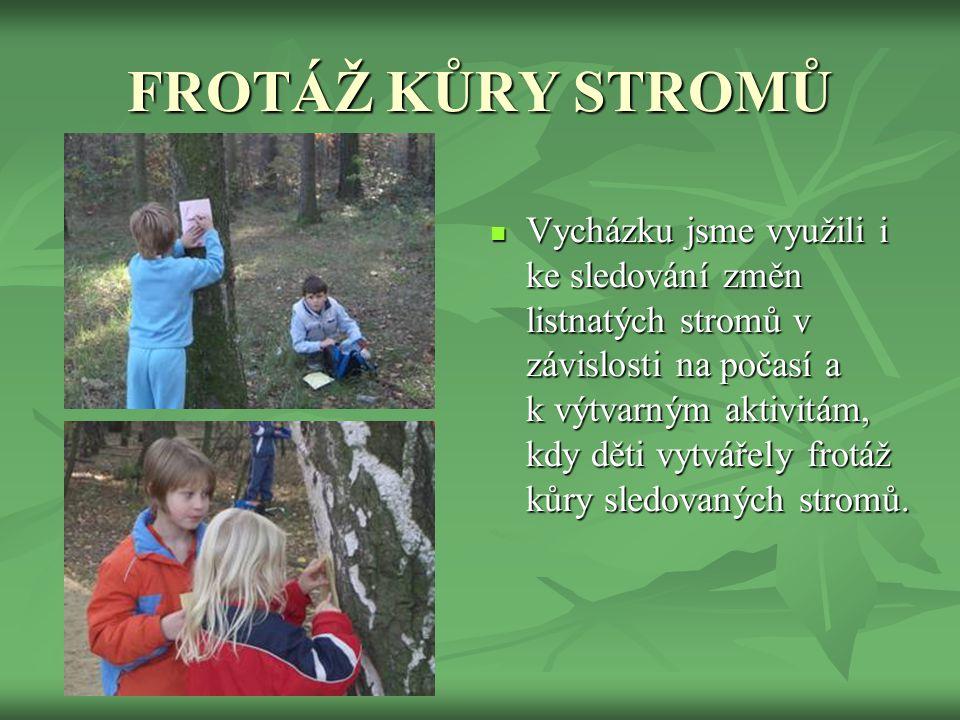  Vybaveny atlasy stromů jsme dětem vysvětlily základní poznávací znaky těchto dřevin: javor babyka, dub šípák a jeřáb muk. Během vycházky nám děti na