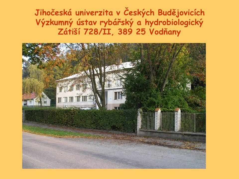 Jihočeská univerzita v Českých Budějovicích Výzkumný ústav rybářský a hydrobiologický Zátiší 728/II, 389 25 Vodňany