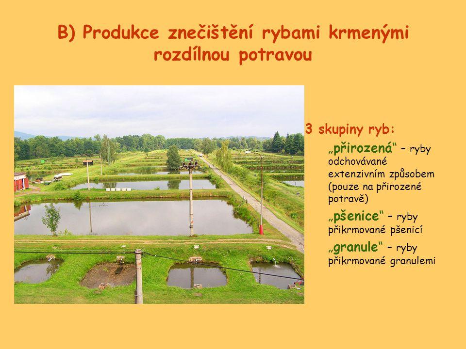 """B) Produkce znečištění rybami krmenými rozdílnou potravou 3 skupiny ryb: """"přirozená"""" - ryby odchovávané extenzivním způsobem (pouze na přirozené potra"""