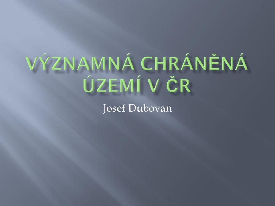 Josef Dubovan