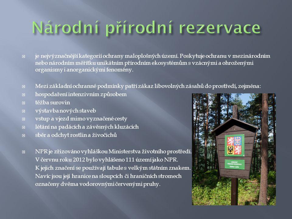  je nejvýznačnější kategorií ochrany maloplošných území. Poskytuje ochranu v mezinárodním nebo národním měřítku unikátním přírodním ekosystémům s vzá