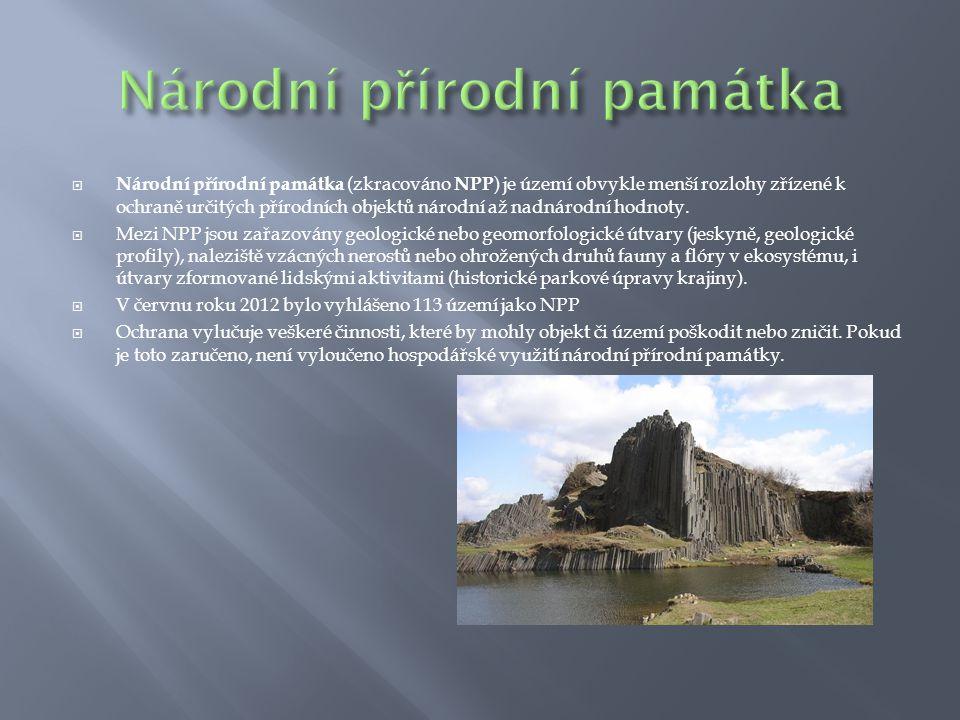  Národní přírodní památka (zkracováno NPP ) je území obvykle menší rozlohy zřízené k ochraně určitých přírodních objektů národní až nadnárodní hodnot