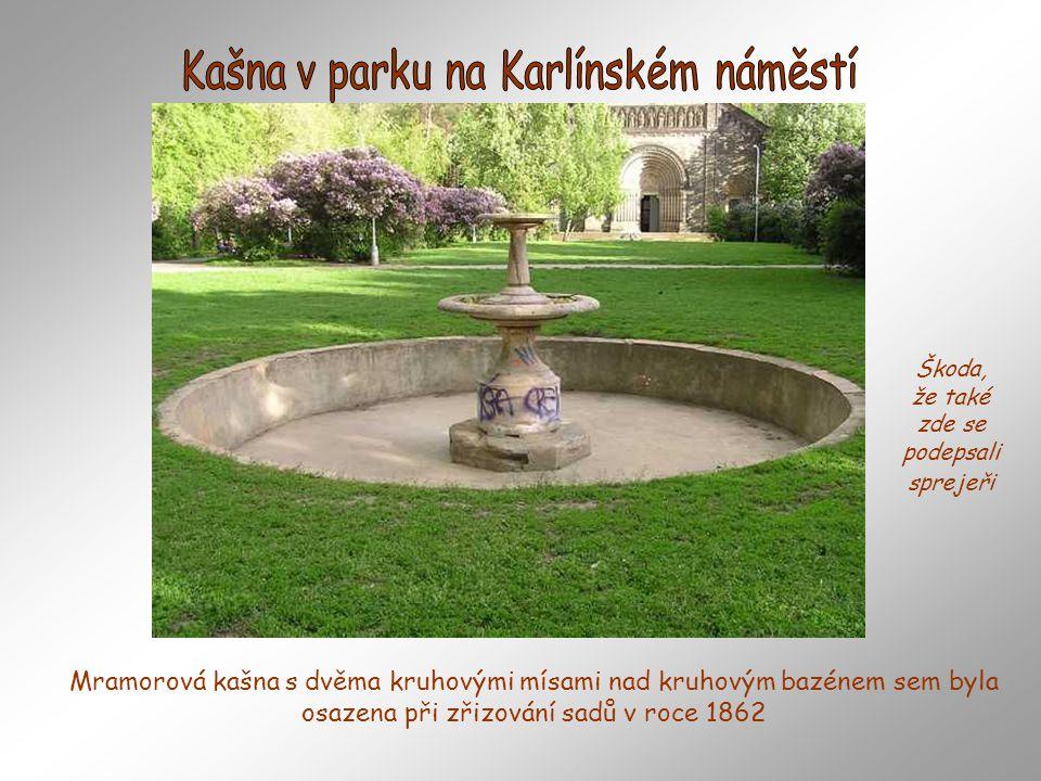 Zahrada má jméno po Adolfovi hraběti z Ledebouru, který získal přilehlý palác v roce 1852. Vlastní palác vznikl už v roce 1601 spojením dvou renesančn
