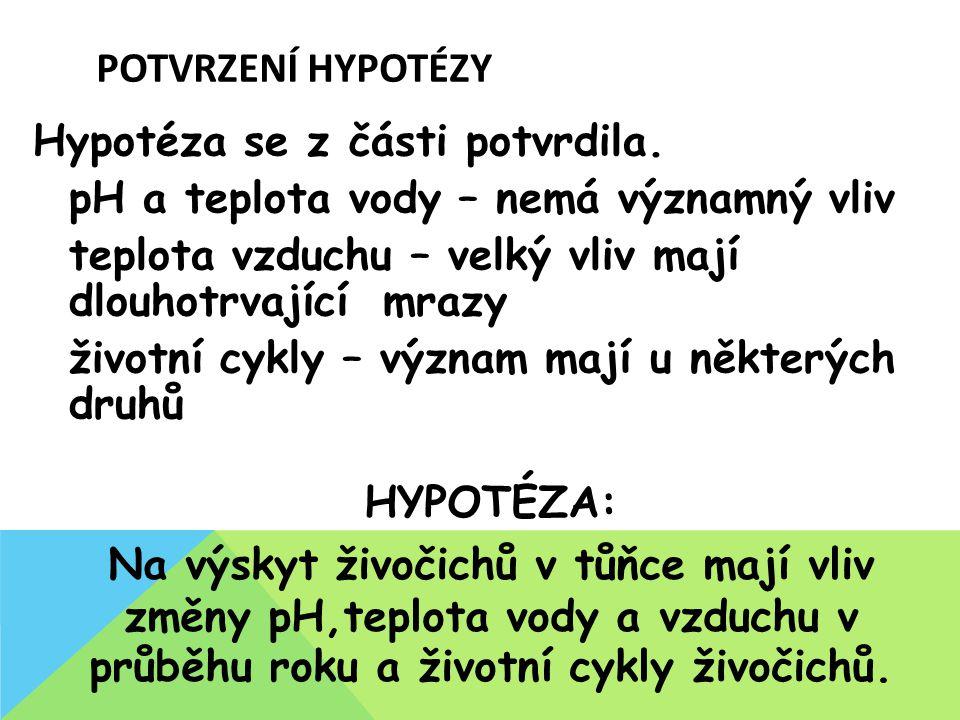POTVRZENÍ HYPOTÉZY Hypotéza se z části potvrdila.