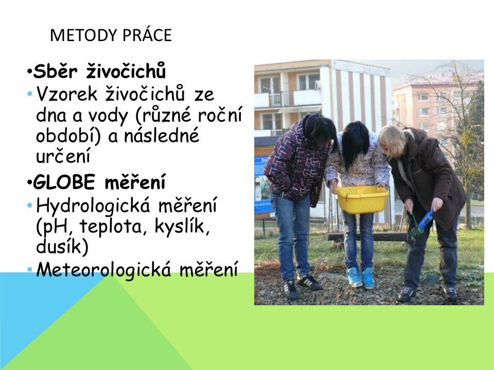 ČLENOVCI – HMYZ PROMĚNA DOKONALÁ Podzim 2010 Jaro 2011 Podzim 2011 Jaro 2012 Podzim 2012 Zima 2012 Jaro 2013 Druh/Rod: Obě tůňky HTDTHTDTHTDTHTDTHTDT chrostík - larva x komár - larva x potápník - larva x plavčík malý - larvaxx plavčík malý - imago xxx x vírník - imago x x x potápník - imagox