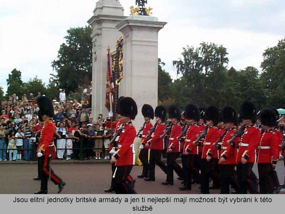 """Palácová stráž stojí ve strážních budkách před palácem. Je oděna do křiklavě červených sak a vysokých čepic z medvědí kožešiny zvaných """"bearskins"""""""