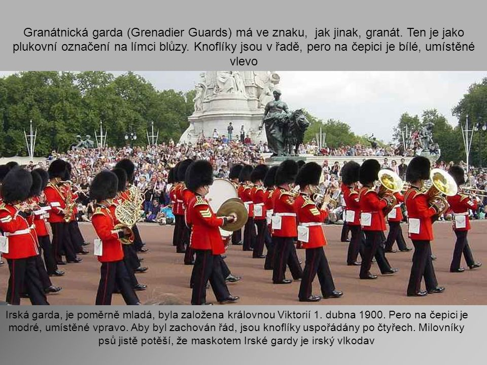 Granátnická garda (Grenadier Guards) má ve znaku, jak jinak, granát.