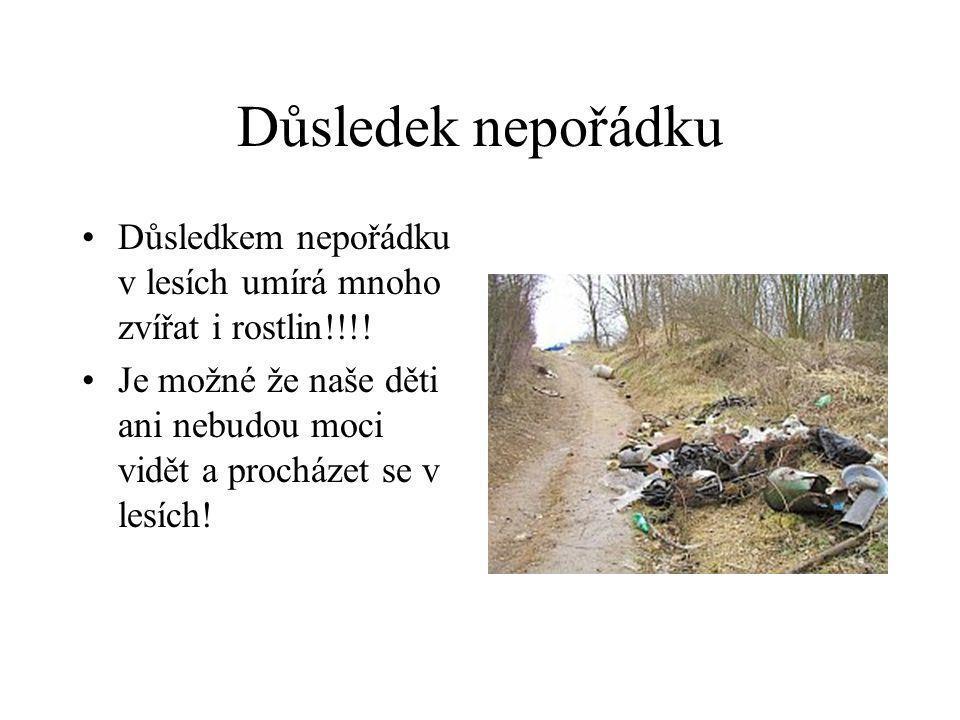 Důsledek nepořádku •Důsledkem nepořádku v lesích umírá mnoho zvířat i rostlin!!!! •Je možné že naše děti ani nebudou moci vidět a procházet se v lesíc