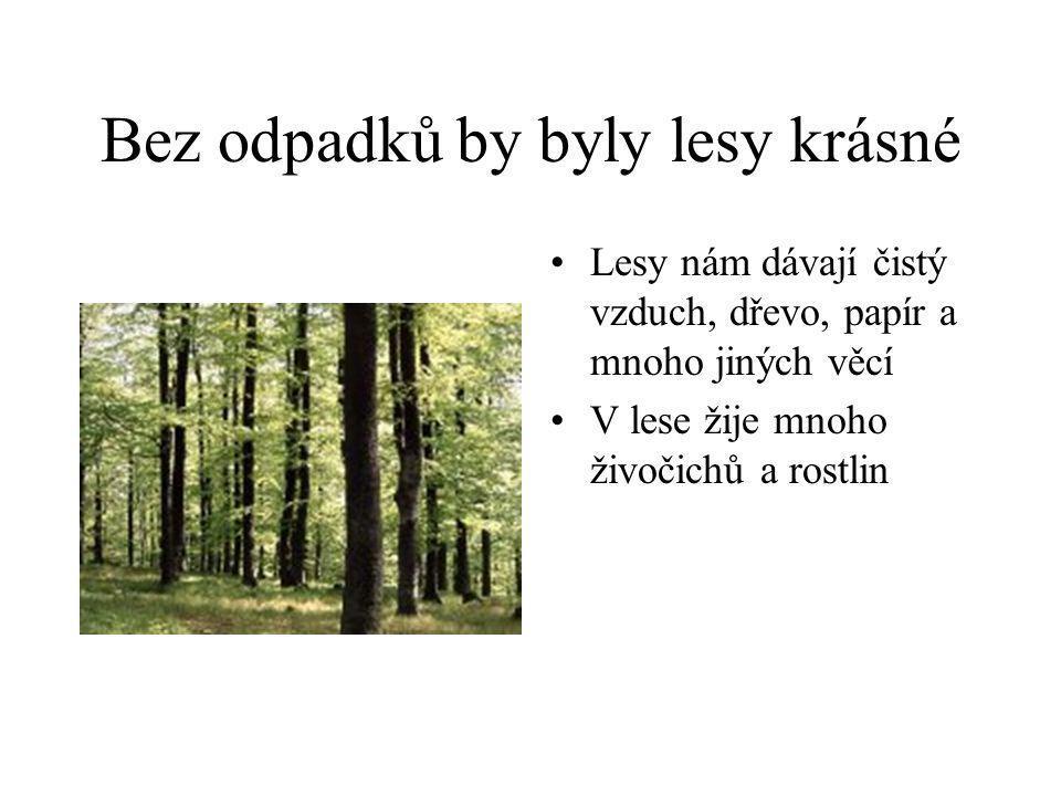 Bez odpadků by byly lesy krásné •Lesy nám dávají čistý vzduch, dřevo, papír a mnoho jiných věcí •V lese žije mnoho živočichů a rostlin