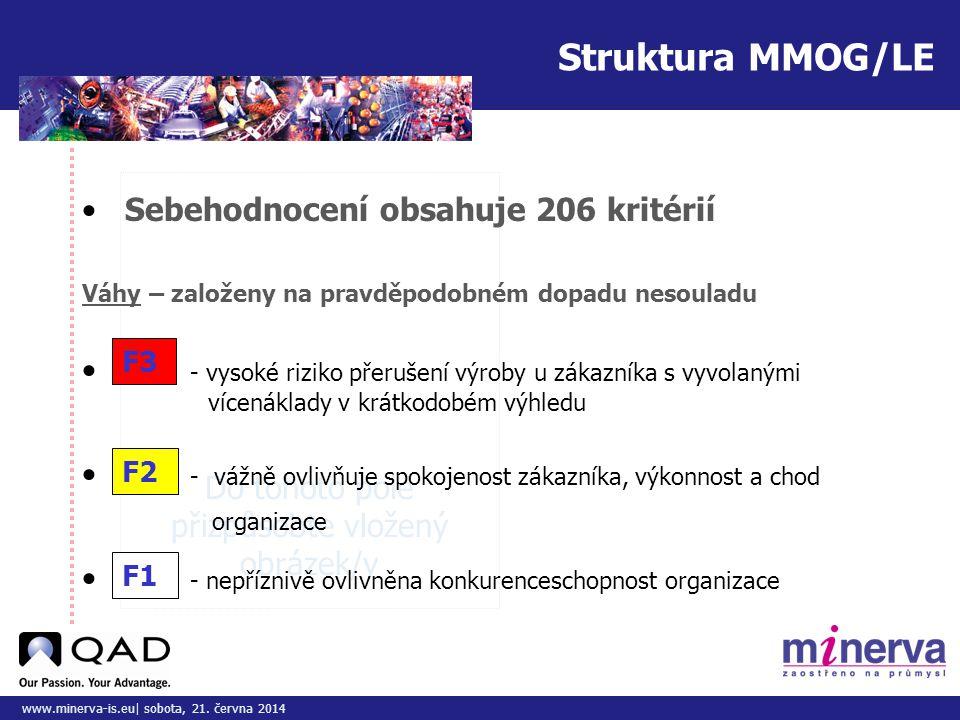 Do tohoto pole přizpůsobte vložený obrázek/y www.minerva-is.eu| sobota, 21. června 2014 • Sebehodnocení obsahuje 206 kritérií F3 F2 F1 • - vysoké rizi
