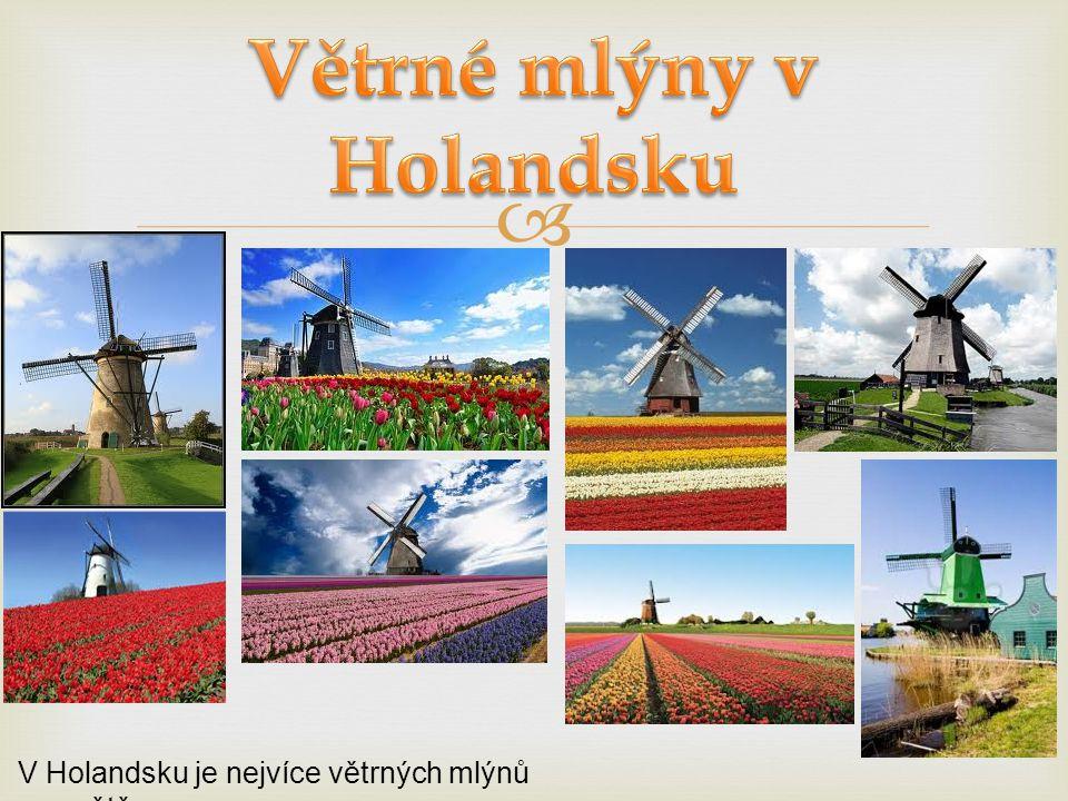  V Holandsku je nejvíce větrných mlýnů na světě.
