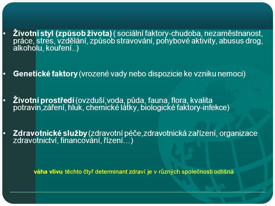 Zahraniční migrace •Kladné saldo zahraniční migrace od roku 2002 •V ČR je evidováno cca 0,5 mil.