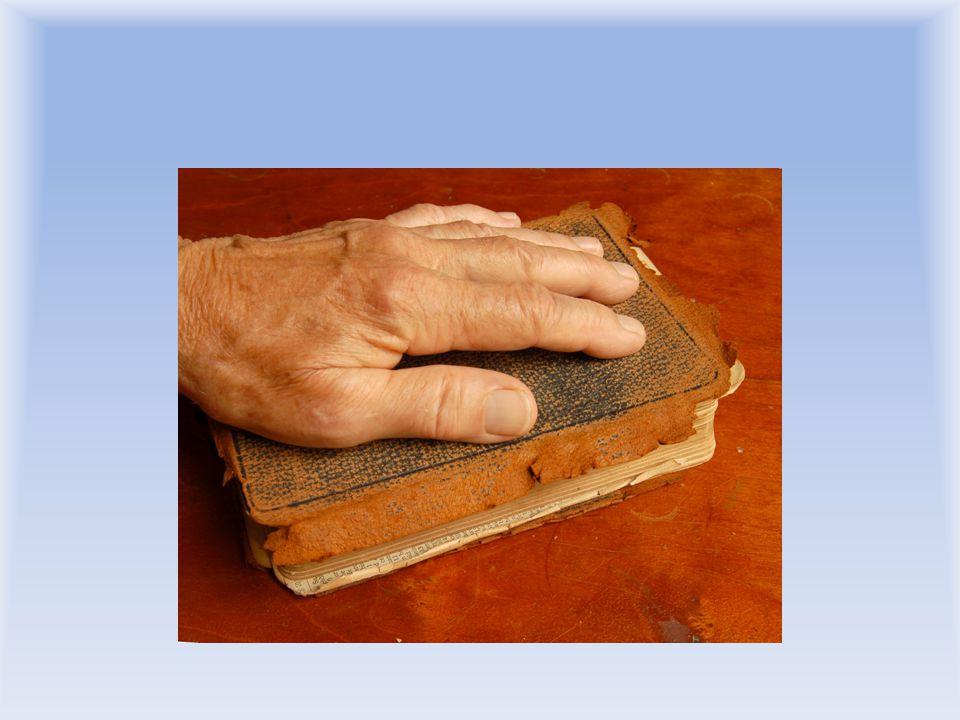 Křesťanství historicky nezůstává v konstantní formě • jeho dnešní forma je momentální výsledek stálého vývoje • při stávajícím kánonu (Bibli) se mohou měnit některé důrazy • Kř.