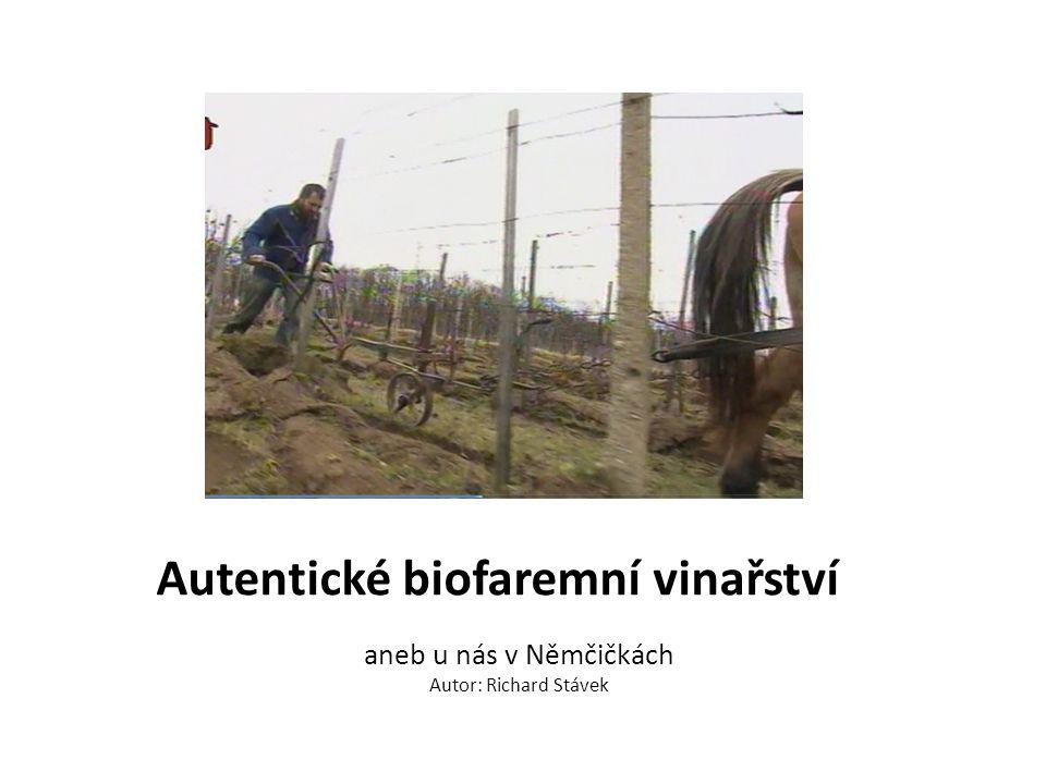 Autentické biofaremní vinařství aneb u nás v Němčičkách Autor: Richard Stávek