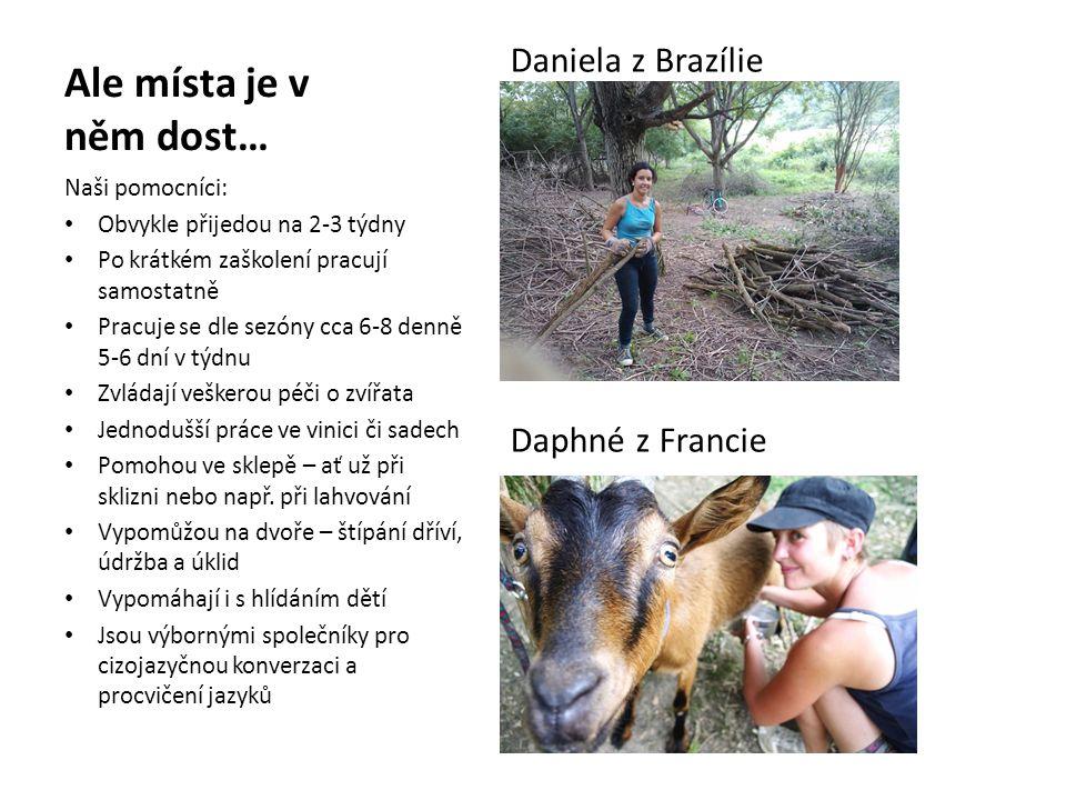 Ale místa je v něm dost… Daniela z Brazílie Daphné z Francie Naši pomocníci: • Obvykle přijedou na 2-3 týdny • Po krátkém zaškolení pracují samostatně