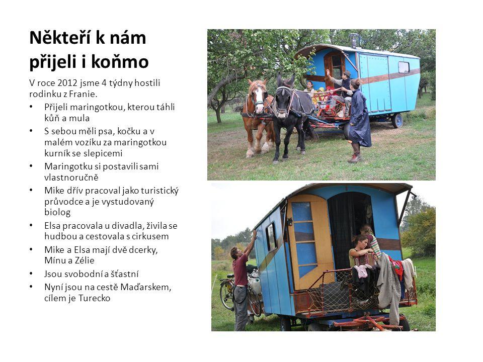 Někteří k nám přijeli i koňmo V roce 2012 jsme 4 týdny hostili rodinku z Franie. • Přijeli maringotkou, kterou táhli kůň a mula • S sebou měli psa, ko