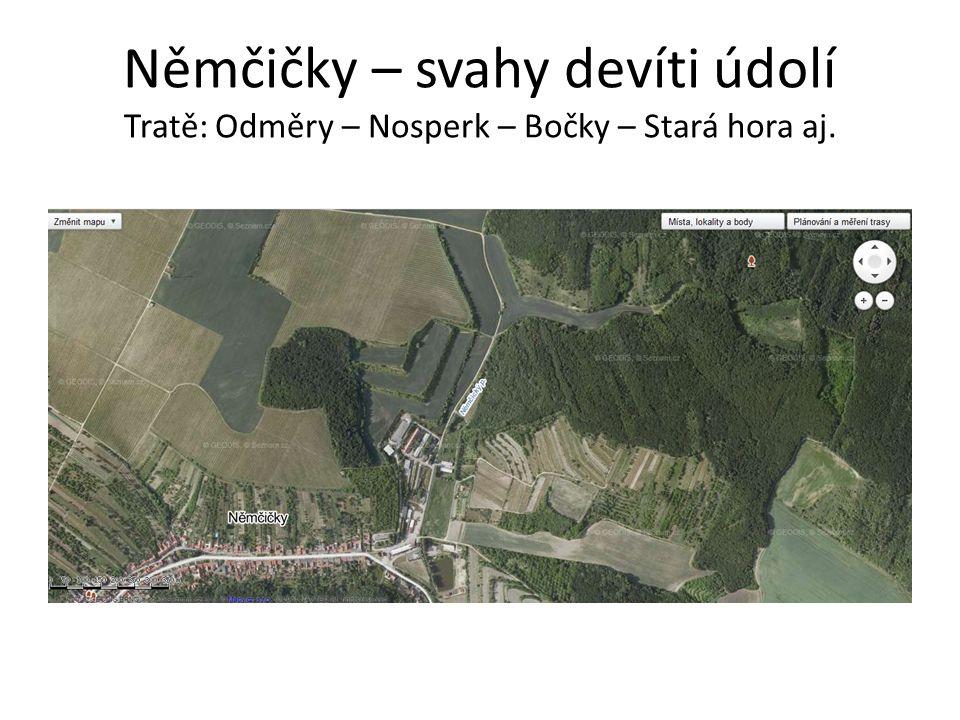 Němčičky – svahy devíti údolí Tratě: Odměry – Nosperk – Bočky – Stará hora aj.