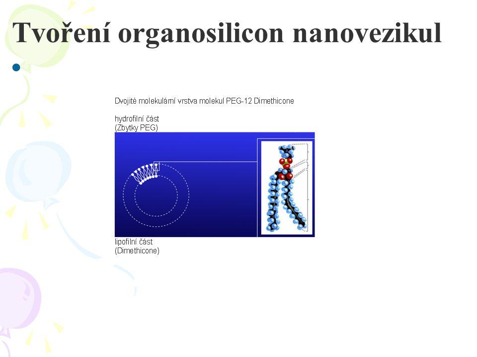 Tvoření organosilicon nanovezikul •
