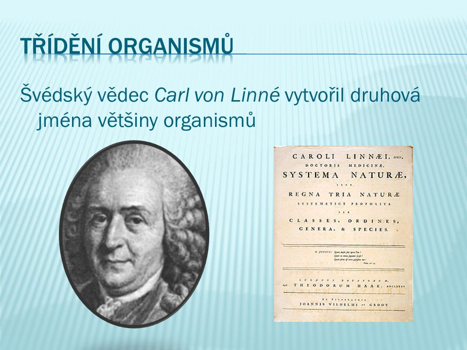 Švédský vědec Carl von Linné vytvořil druhová jména většiny organismů