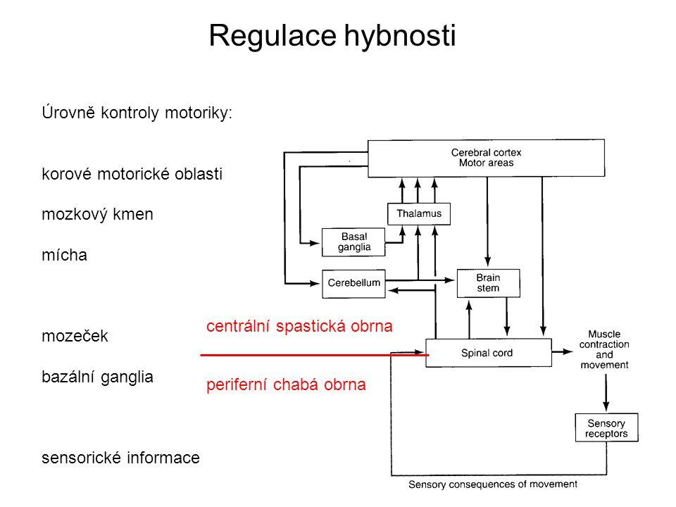 Regulace hybnosti Úrovně kontroly motoriky: korové motorické oblasti mozkový kmen mícha mozeček bazální ganglia sensorické informace centrální spastická obrna periferní chabá obrna