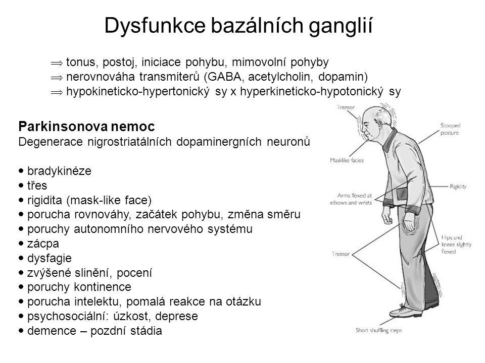 Parkinsonova nemoc Degenerace nigrostriatálních dopaminergních neuronů  bradykinéze  třes  rigidita (mask-like face)  porucha rovnováhy, začátek pohybu, změna směru  poruchy autonomního nervového systému  zácpa  dysfagie  zvýšené slinění, pocení  poruchy kontinence  porucha intelektu, pomalá reakce na otázku  psychosociální: úzkost, deprese  demence – pozdní stádia  tonus, postoj, iniciace pohybu, mimovolní pohyby  nerovnováha transmiterů (GABA, acetylcholin, dopamin)  hypokineticko-hypertonický sy x hyperkineticko-hypotonický sy Dysfunkce bazálních ganglií