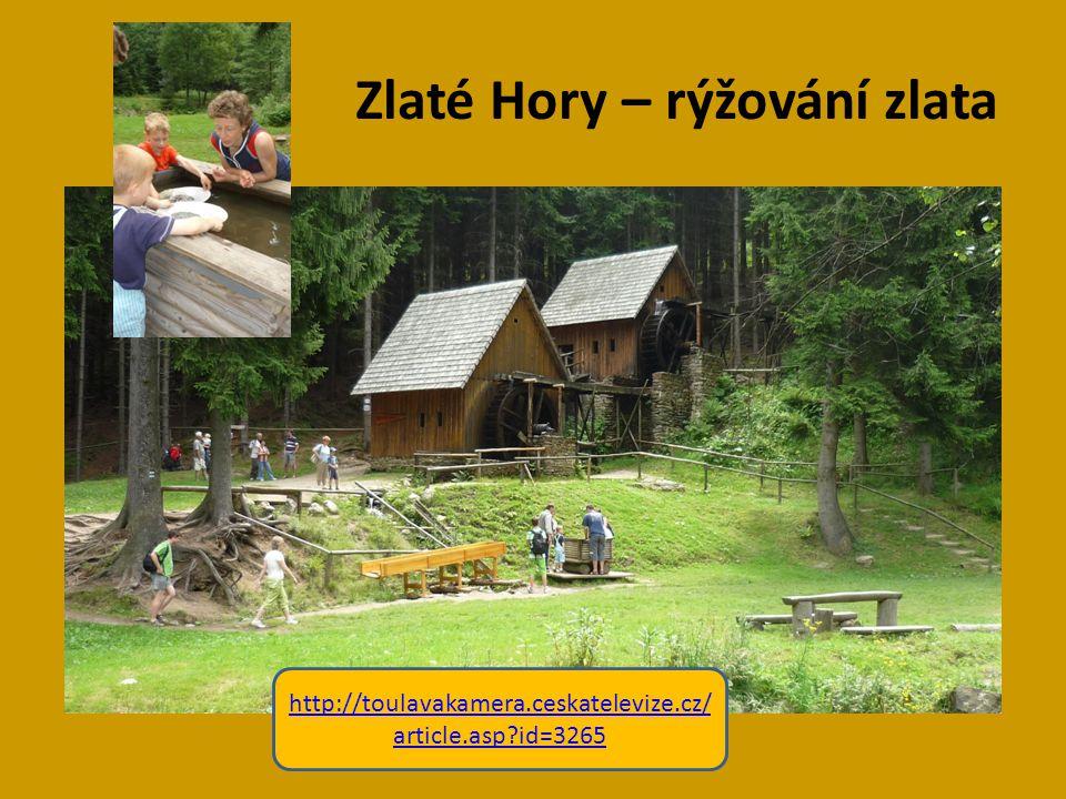 Zlaté Hory – rýžování zlata http://toulavakamera.ceskatelevize.cz/ article.asp?id=3265