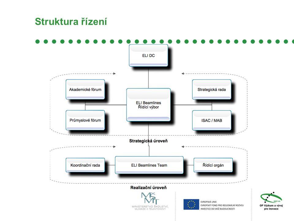 Struktura řízení