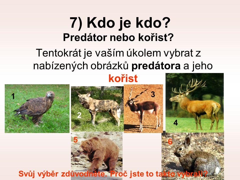 7) Kdo je kdo? Predátor nebo kořist? Tentokrát je vaším úkolem vybrat z nabízených obrázků predátora a jeho kořist 1 2 3 4 5 6 Svůj výběr zdůvodněte.